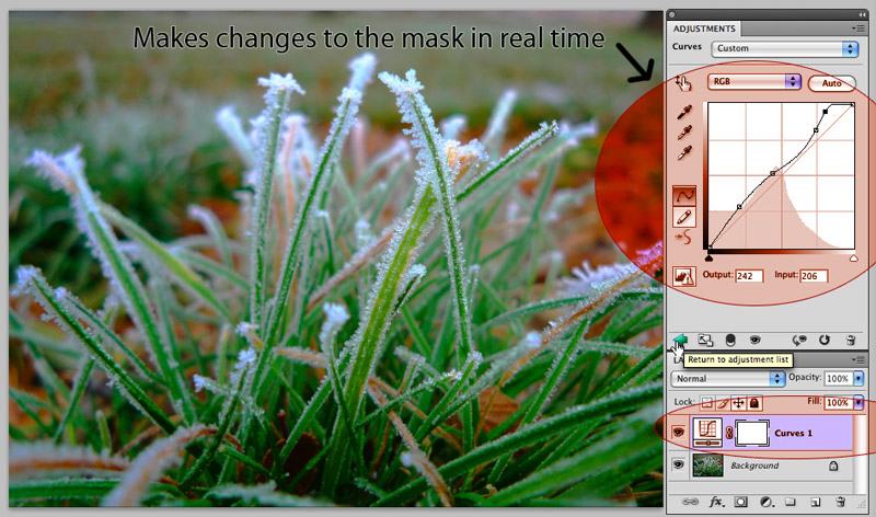 cs4 adjustment panel curves Adobe Photoshop CS4: Straight Dope Review