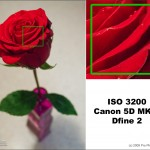 1 2 5d2 3200 dfine 150x150 Noise Reduction Shootout: Straight Dope Comparison Review