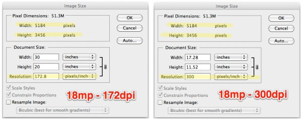 dpi ppi resolution example 600x239 The Straight Dope on Digital Resolution and Printable Size.