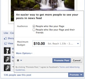 Seim Studios promote 300x278 Facebook is Charging   Whats Next for Your Page + Five REAL Tips for Traffic.